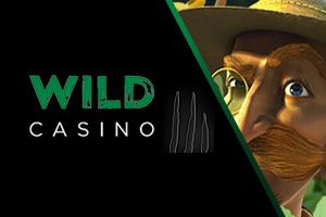 wild casino image logo