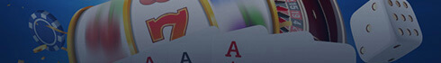 Choosing an Online Casino Game Variety and Software Banner